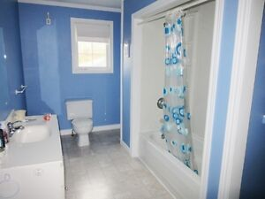 106A George Pierceys Lane in Hearts Content - MLS 1130576 St. John's Newfoundland image 8