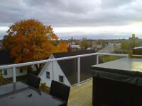 Rooftop Penthouse with Hot Tub! Furnished! Utilities NOT Incl.