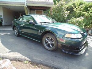 35th anniversary  1999 Ford Mustang SLR Coupe great price