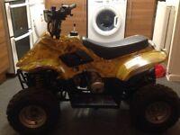 110cc! quad