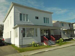 Propriété à revenu Lac-Saint-Jean Saguenay-Lac-Saint-Jean image 1