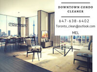 DOWNTOWN CONDO CLEANER