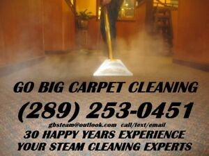 CARPET CLEANING  30YRS GUARANTEED SERVICE, GO BIG STEAM CLEANING