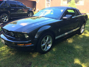 2007 Ford Mustang Convertible 5spd LOW MILES