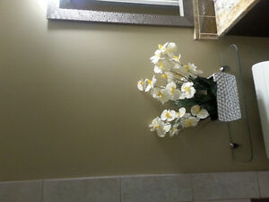 new basement own bathroom and kitchenette near nisku Edmonton Edmonton Area image 3
