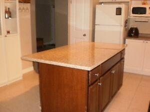 GRANITE island COUNTERTOPS, cash & carry in specific sizes Kitchener / Waterloo Kitchener Area image 8