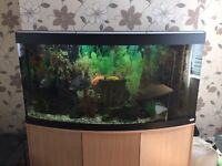 Fluvel fish tank with fish new filter