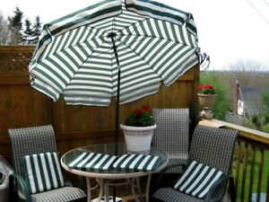 Patio umbrella and chair cushions ! only !