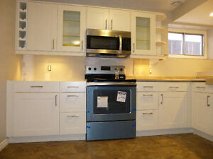 RENOVATED and Re designed lower level two bedroom suit