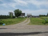 House with 60 acres for sale 5 minutes from Belleisle Ferry