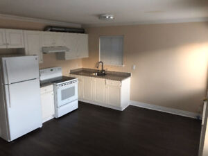 North Burnaby downstairs 2 Bedroom suite for rent!