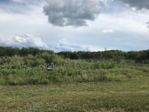 5acres in subdivision minutes from the city of Saskatoon SK