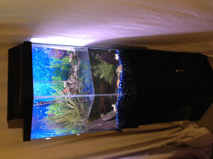 60 gallon fish tank for sale with accessories
