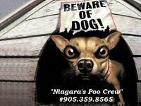 Niagara's Poo Crew ~ Dog Waste Cleanup ~ October Special ~
