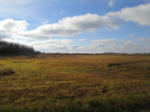 Build your dream home on 39.71 acres