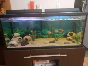 70 gallon and EVERYTHING IS INCLUDED