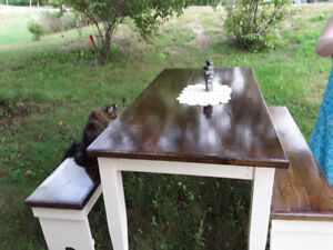 Large Table with 2 Benches