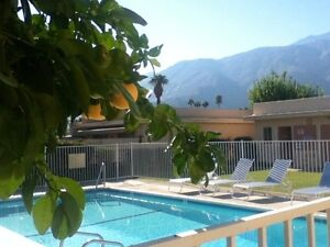 PALM SPRINGS CALIFORNIA - WINTER IN THE DESERT