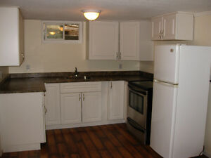 1BDRM/1BA Downtown BSMT suite
