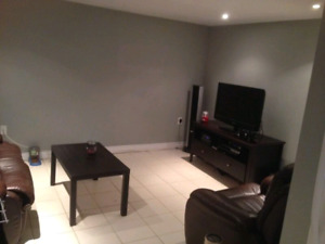 1 Bedroom Basement Apartment - Fairview (everything included)