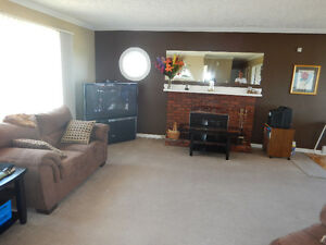 Country Living in the City on 1 Acre Lot (East End) St. John's Newfoundland image 4