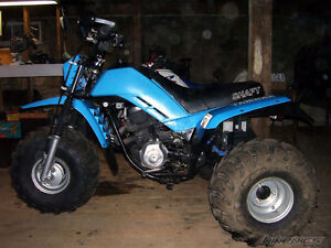 LOOKING FOR YAMAHA 225DX/DR 3 WHEELER PARTS BIKE JUNK OR NOT