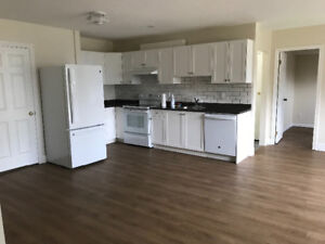 Newly renovated one bedroom and den suite for rent