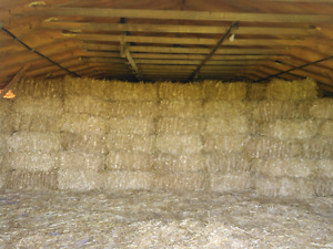 Small square wheat straw bales for sale