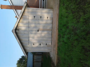12 x 16 SHED