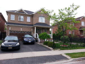 Basement Apartment - Spacious with separate entrance