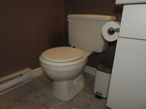 TOILETS, white, in excellent condition