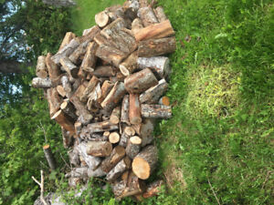 Seasoned blocked hard firewood