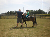 Hands-On Everything Horse Learning (starts kids 4+yrs old)
