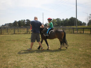 Hands-On Everything Horse Learning (starts kids 4+yrs old) London Ontario image 2