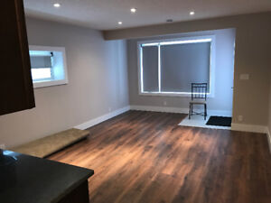 Walkout Basement for Rent Redstone