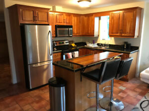 Full Kitchen - Wood cabinets, stainless steel appliances, island