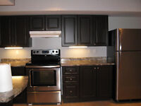 Newmarket Large Bright One Bedroom Basement Apartment