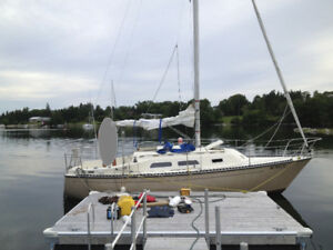"26.5""Sailboat for sale: Paceship PY26"