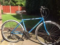 adults ridgeback romany road bike