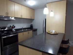 Newly Reno'd 1 Bed Close to SMU and Superstore Southend Nov 1st