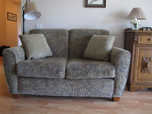 Quality loveseat with two cushions