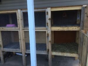 LARGE ANIMAL HUTCH/ CAGE