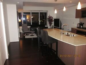 Furnished Luxury Century Park Condo