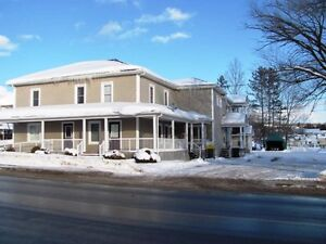 GREAT INVESTMENT 2 BUILDINGS WITH 10 UNITS IN ST-LEONARD