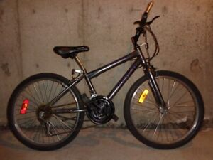 TEN TEEN UNISEX MOUNTAIN BIKES