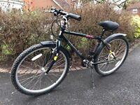 Mountain Bike with comfy saddle!