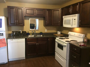 2 Bedroom Apartment Downtown Feb Free