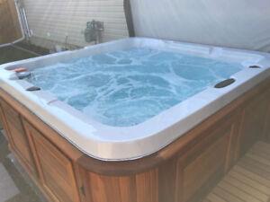 Baffin 45 arctic spa Hot Tub