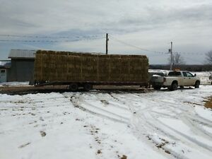 Hay Bales Foresale