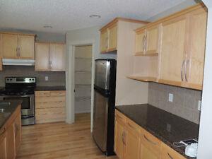 3 Bedrooms and 2.5 bathrooms single house for rent Edmonton Edmonton Area image 6